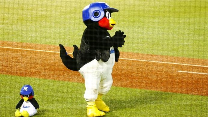 つば九郎の中の人、足立歩は元プロ野球選手なの?契約更改は越年?